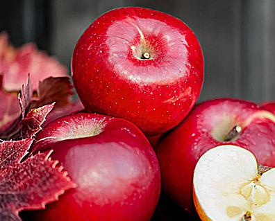 【诱人的飞行百度云】诱人的苹果